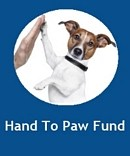 Hand To Paw Fund - Website developed by Mosaik Web