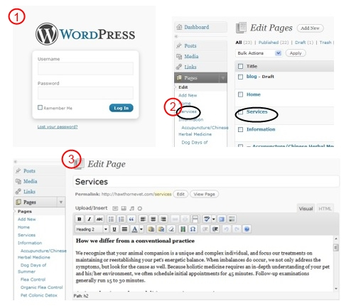 wordpress login example