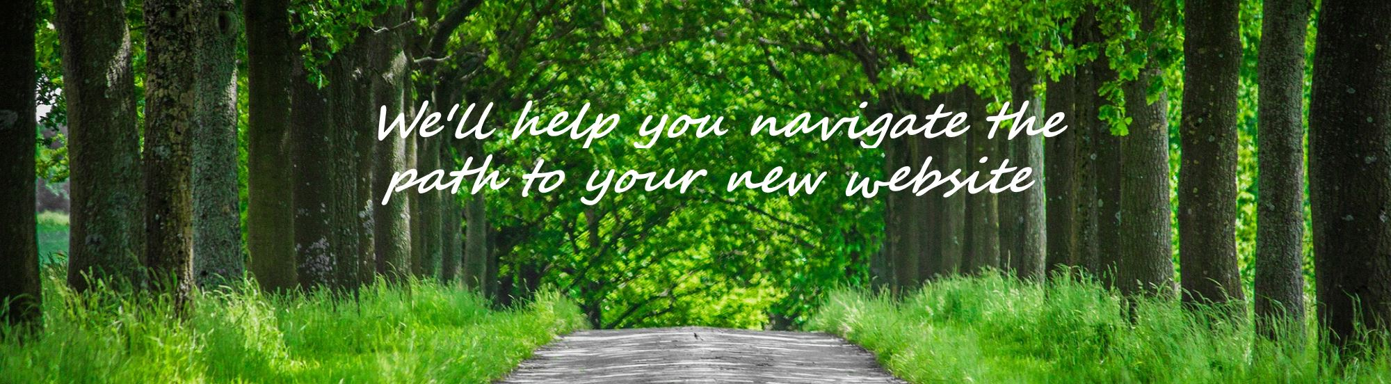 let us help you navigate the path to your new website