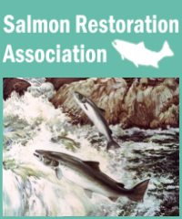 Salmon Restoration Association -  Website design by Mosaik Web
