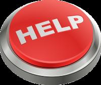Emergency Website Support
